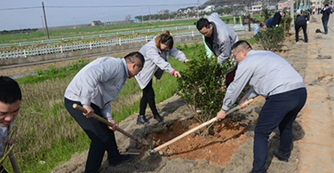 Participate in afforestation and protect the beautiful home!